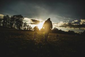 Thérèse, Bergère sans terre
